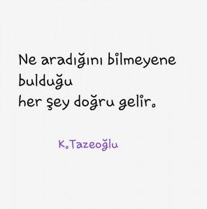 Kahraman Tazeoğlu Etkileyici Kitap Sözleri 3